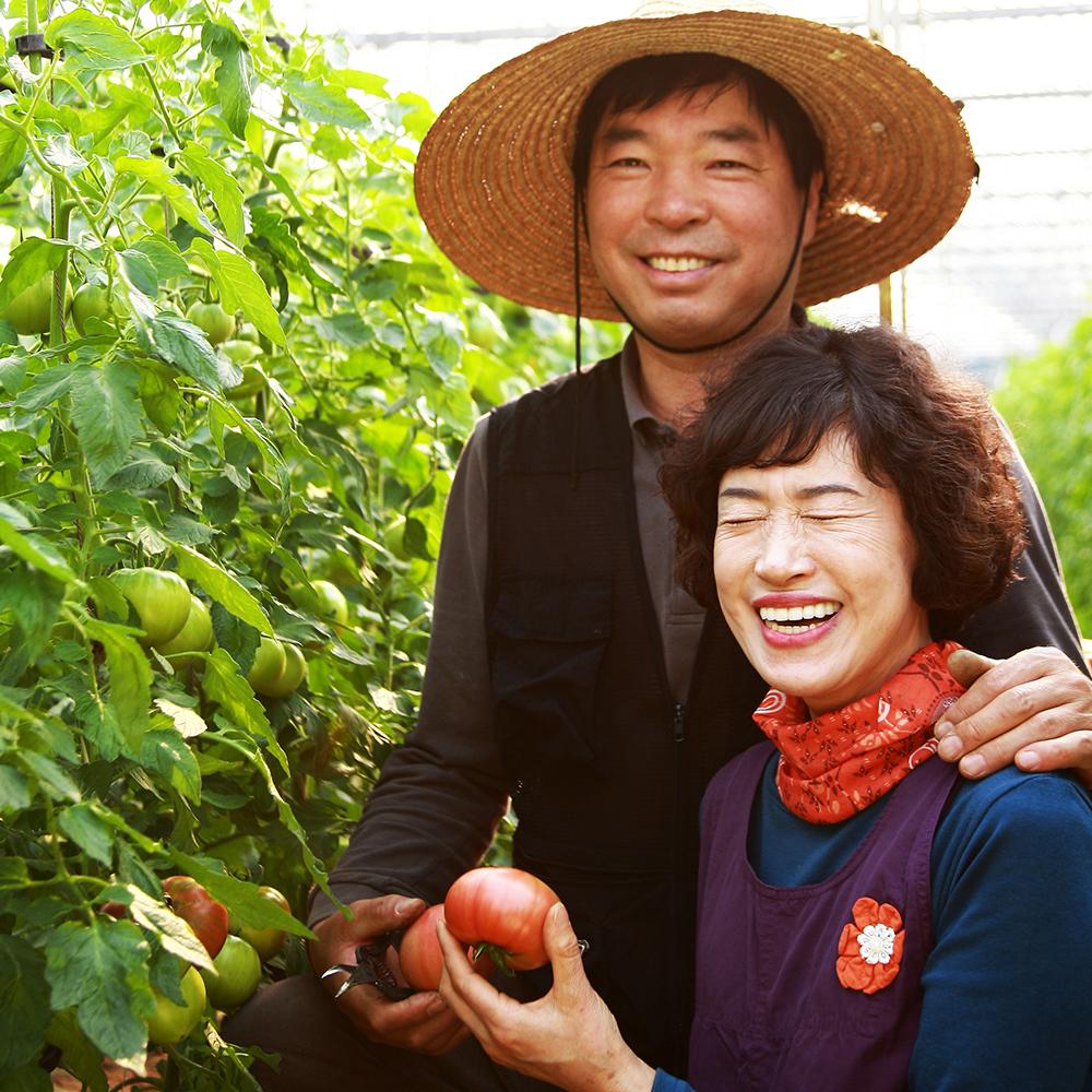 달기농장 유기농 토마토 맑은즙/주스
