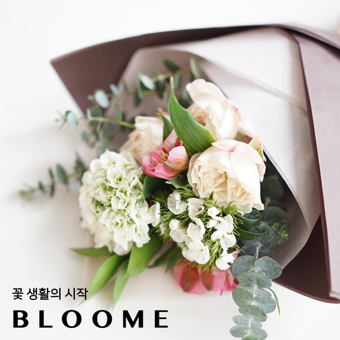 블루미 꽃 정기배송 서비스